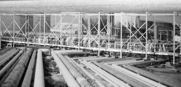 03-A-terceira-Agua_VENCEDOR_Faculdade-de-Arquitectura-da-Universidade-do-Porto_LR-web_1_980_2500.jpg