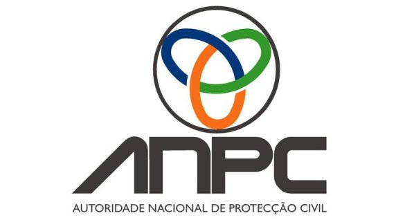 anpc1_1_980_2500