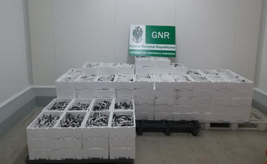 gnr-ucc-apreensao-site